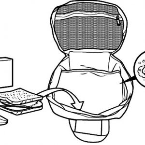 Organized Food In Lunchbox Coloring Pages