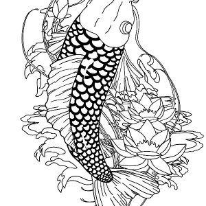 Paradise Koi Fish Coloring Pages