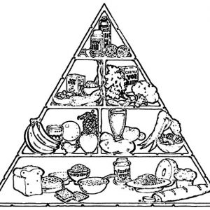 Perfect Food Pyramid Coloring Pages