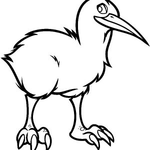 Proud Kiwi Bird Coloring Pages