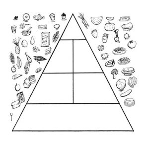 Put The Right Food In Food Pyramid Coloring Pages