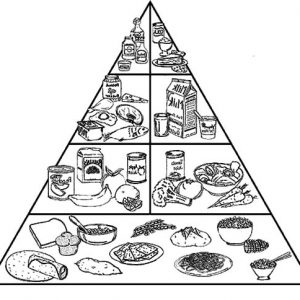 Pyramid Of Healthy Food Coloring Pages