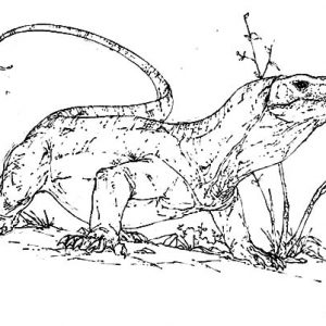 Scary Komodo Dragon Coloring Pages