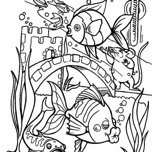 Tropical Fish Kissing Aquarium Glass Wall Coloring Pages