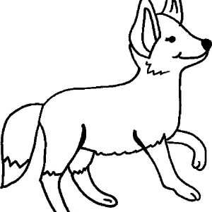 Walking Kit Fox Coloring Pages