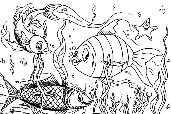 Fish Coloring Pages Kids - Download & Print Online Coloring ...