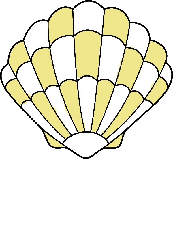 A Lovely Zigzag Scallop Seashell Drawing Coloring Page